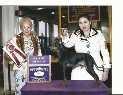 Marit and Sailor at Westminster
